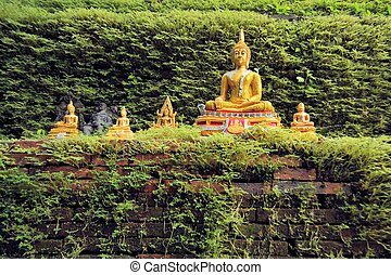 Golden Buddha statues with a wall covered by moss