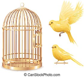 Golden Canary Cage Set - Canary birdcage set of isolated...
