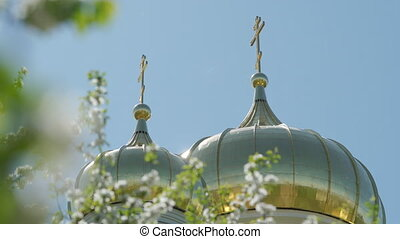 Golden Christian church dome blooming apple tree clear sky ...