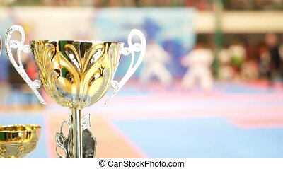 Golden cup in front of fighting at the karate championship,...