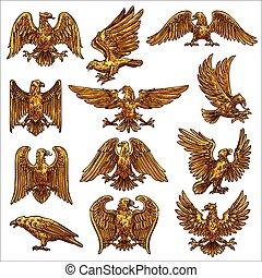Golden eagle, hawk, falcon, healdic birds of prey