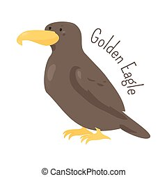 Golden eagle isolated on white
