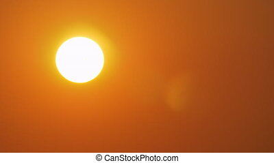 Golden sun shining in evening sky and sea gull flying