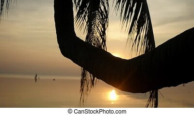 Golden evening sun shining on paradise island through the...