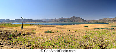 Golden field and blue lake