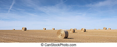 golden field with straw bales under blue sky in the north of france