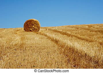 Golden field with straw stems and straw bale