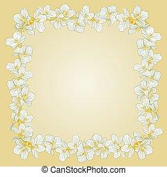 Golden frame with Jasmine vector