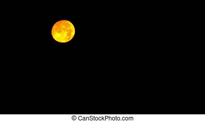 Golden Full Moon setting on morning - Beautiful golden Full...