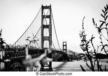 Golden Gate bridge in b&w