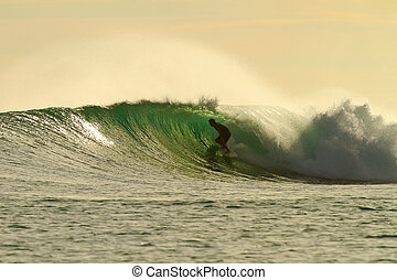 Golden glow surfer in amazing tube - Extreme surfer on ...