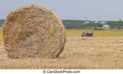 Golden hay bale - field after harvesting, the Combine...
