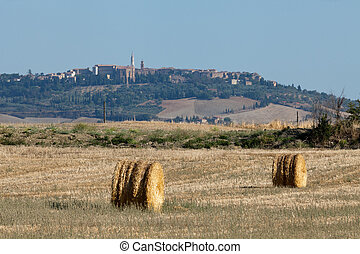 Golden Hay Bales on a field in the Tuscany