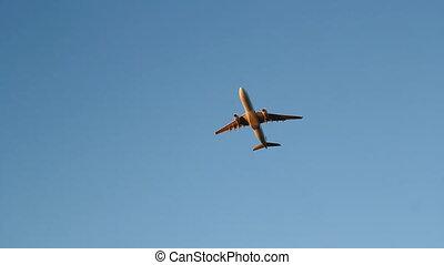 Golden jet.