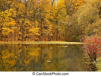 golden lake - Lake with beautiful colors