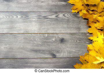 Golden maple leaves on a wooden background