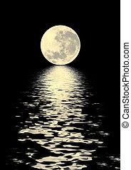 Golden Moon Beauty