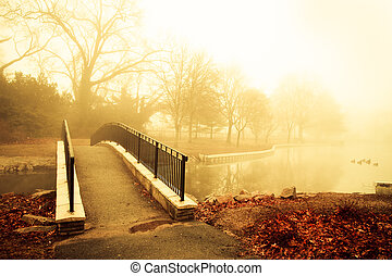 Golden Morning Fog