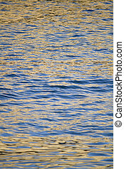 golden ocean water