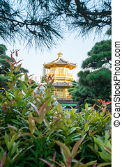 Golden Pavilion of Chi Lin Nunnery chinese garden in Hong Kong