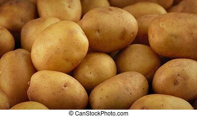 Golden Potatoes Pile Rotating - Pile of golden potatoes...