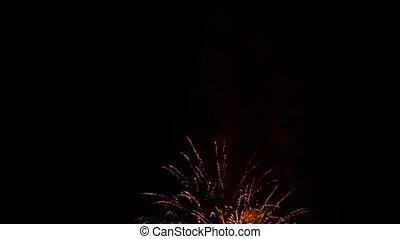Golden Rain Fireworks On Black Background At Night