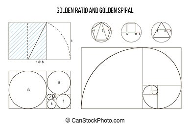 business card template golden ratio divine proportion ideal
