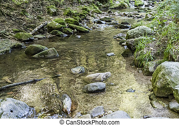 golden reflection in clear water between stones in Lierbach river-bed in woods of Black Forest, near Allerheiligen, Germany