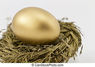 Golden Retirement Hopes - Closeup of gold nest egg set in ...