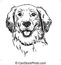 Golden Retriever Dog Head Logo Vector Image Template