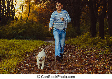 Golden retriever dog with owner