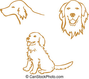 Golden Retriever outline, vector clipart