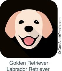 Golden Retriever face, front view vector