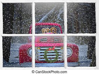 golden retriever in Christmas truck
