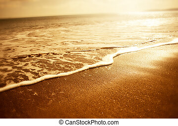 Golden Sea Foam. Sunset close up of golden sea foam -...