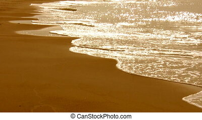Golden sea waves and beach