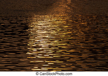 Golden Shimmering Water in the Light of Sunset