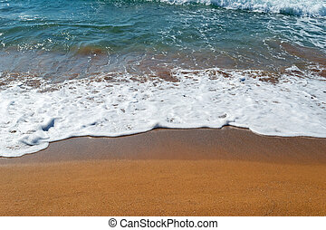 golden shoreline - golden shore and blue water