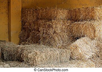 Golden straw barn stacked on the farm