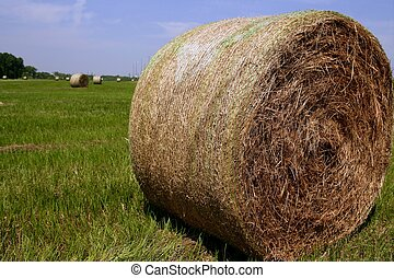 Golden Straw Hay Bales in american countryside