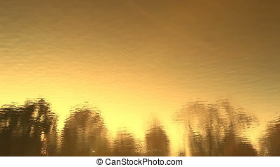 Golden Sunset Backlit Tree Line Landscape Water Reflection -...