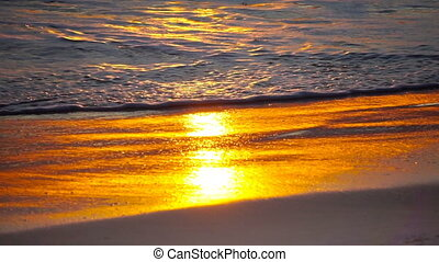 Golden sunset on the ocean shore