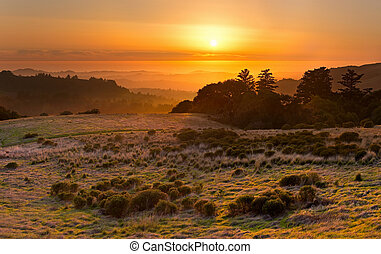 Golden sunset over California coastal meadow and Pacific...