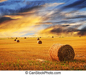 Golden sunset over farm field with hay bales