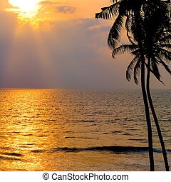Golden sunset over the ocean.