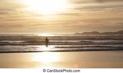 Golden surfer. - Silhouette of young surfer walking into the...