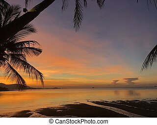 Golden tropical sunset with silhouette palm trees.