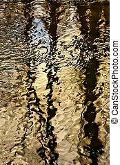 Golden water texture