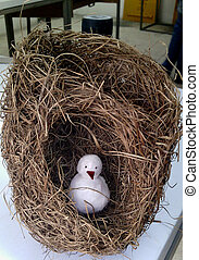 golden weaver bird nest