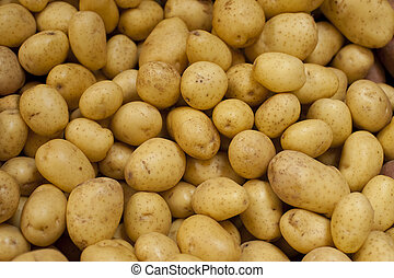 Golden Yukon potatoes in a pile at a farm stand